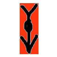 20200221_kanji_04.png